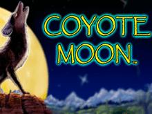 Игровой автомат онлайн Луна Койота
